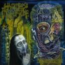 HAMMERS OF MISFORTUNE geben Details zu ihrem neuen Album 'Dead Revolution' preis