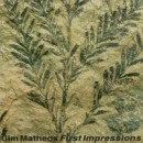 "Jim Matheos ""First Impressions"""