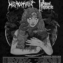POISON HEADACHE announces European tour as support of RINGOWRM for November!