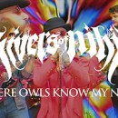 Rivers Of Nihil launchen neues Video zu 'Where Owls Know My Name' via Apple Music!