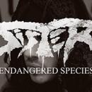 SISTER veröffentlichen brandneues Video zu 'Endangered Species' über Metal Hammer!