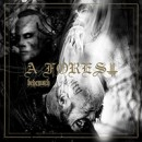 Behemoth releases new EP, 'A Forest', digitally worldwide
