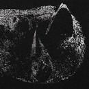 Demon Head reveals details for new album, 'Viscera'