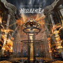 "Negligence ""Coordinates of Confusion"""