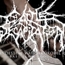 "Cattle Decapitation launches bass play-through for ""Clandestine Ways (Krokodil Rot)"""