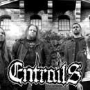 ENTRAILS begin work on new album!