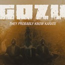 "Gozu premieres new video, ""They Probably Know Karate"", via MetalInjection.net"